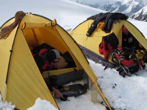 Tropiki namiotowe są szczególnie narażone na niszczące działanie promieni UV na dużych wysokosciach